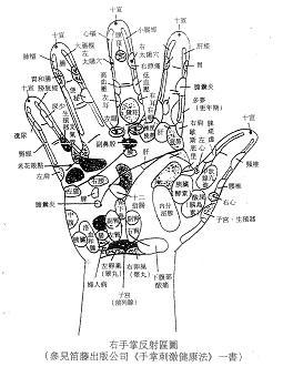 手掌穴位_手掌穴位挂图下载_展板POP_源文件库_矢量素
